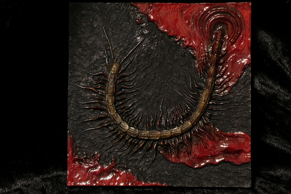 Bloodborne/Virmin虫